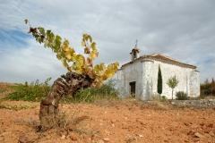 Ermita-de-San-Isidro-1_w