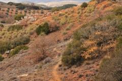 Exp.-Cerro-de-Valdezarza-1
