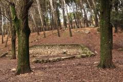 Exp.-Parque-Forestal-de-Valquejigoso