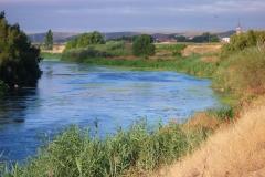 Exp.-Parque-Tierno-Galvan-rio-Jarama-3