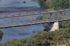 Puente-sobre-el-Jarama.-S-XIX