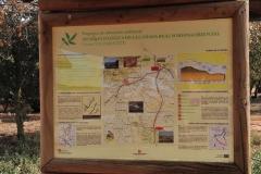 Exp.-Senda-Ecologica-Canada-Real-Soriana-17