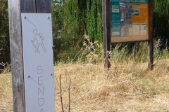 Exp.-Senda-Ecologica-de-la-Via-Verde-del-Tajuna-1