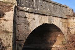 Exp.-Puente-de-Piedra-en-el-Tajuna-13